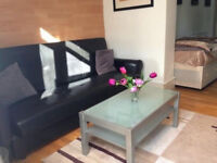 Stunning studio in South Bermondsey ideal for couples/singles!