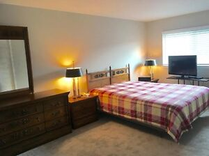 WHOLE SEMI DETACHED  HOUSE FOR RENT IN SCARBOROUGH