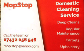 Team of Experienced cleaners