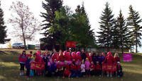 CIBC Run for the Cure Team Fundraising Coordinator
