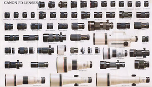 Looking for Canon FD lenses