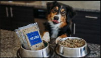 PET FOOD DELIVERY!!!!!!!