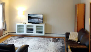 Fully Furnished Condo Near U of A, Whyte Ave - Must See!