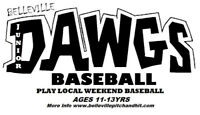 Local House League Baseball League