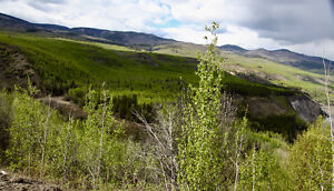 Property For Sale at  Telegraph Creek BC