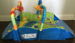 Bright Start Environnement play place for baby
