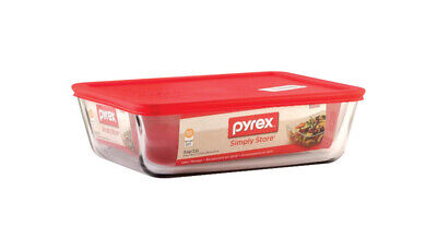 Storage Plus 11-Cup Rectangle Storage Dish with Red Plastic