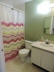 Independent Room Available for Winter sublet (Posh Area) Kitchener / Waterloo Kitchener Area image 5