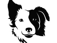 Norfolk Pet Services - Dog Walking, Cat Feeding, Small Animal Care and more in West Norfolk