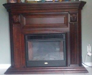 Coleman 4ft Indoor Electric Fireplace $300.00 obo