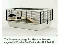 PET only mice for sale