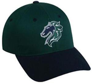 Minor League Baseball Hats 301c8923495