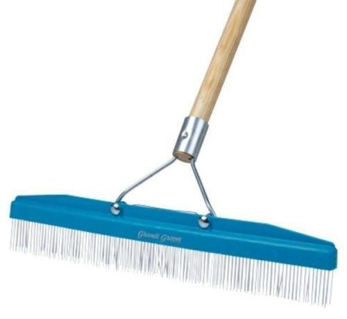 carpet brush. carpet brush
