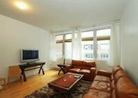 fully furnished condo in the heart of downtown Montreal 3 1/2