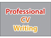 CV Writing, Editing & Tailoring, Professional CV Writer, FREE CV Analysis, LinkedIn, Help