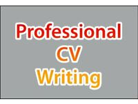 Professional CV Writing Service, CV Writer with 700+ Great Reviews, CV Help, Amending & Editing