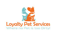 Dog Grooming in the Coventry Hills,Harvest hills, NW, NE Area