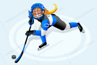 Adult female hockey players wanted for spring league