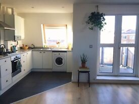 Spacious and light 1 bedroom apartment sublet in Hackney