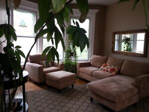 All included GORGOUS PLATEAU APT IN VICTORIAN HOUSE-A VOIR