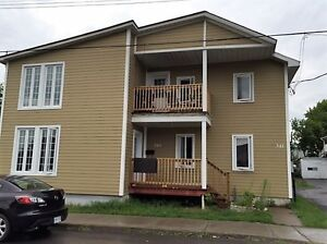INVEST IN THIS EXTENSIVELY RENOVATED DUPLEX!!!