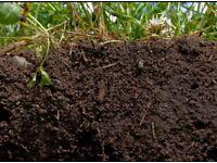 FREE top soil!