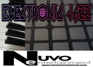 Live Electronic Jazz and Funk and DJ Windsor Region Ontario image 1