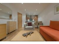 Beautiful 4 bed in Oval, Brixton