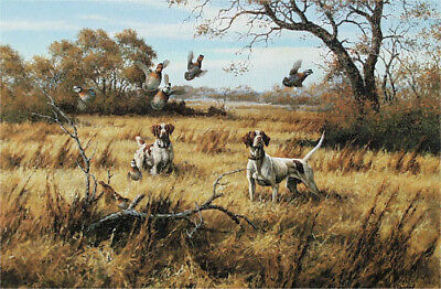 Used, LOST POINT David Drinkard  Giclee on Canvas Quail Hunting With Dogs   for sale  Spring