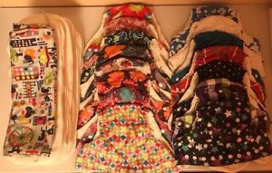 Sunbaby Size 2 Pocket Cloth Diapers and Inserts (Girls' Lot)