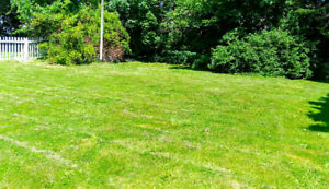 Beautiful Lawns mowing service