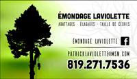 Abattage d'arbres, élagage, taille de cèdres et plus...