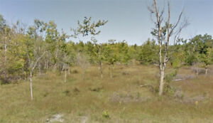 Power Marketing Real Estate:Prime land 2 Acres in Dunrobin Shore