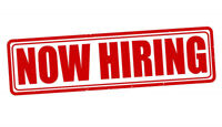 Looking for Landscaper Staff