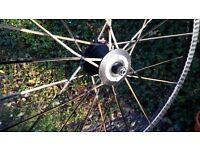 Lightweight 'Ventoux' 10SPD wheel