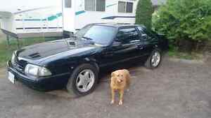 5.0 Ford mustang lx