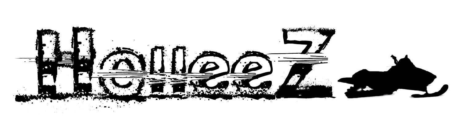 Holleez Maine Used Snowmobile Parts