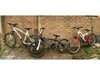 Mountain bike BMX