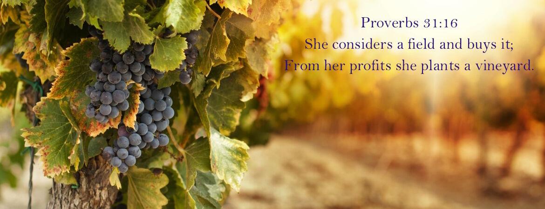 planting_a_vineyard