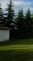 Vacant Alberta Lot with Drilled Well!