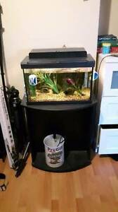 10 gallon tank with stand and accessories for sale.