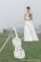 EXPEIENCED MUSICIANS ~ VIOLIN & CELLO