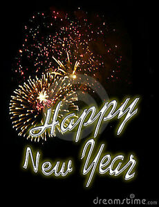 Book Your New Year Eve DJ NOW Kitchener / Waterloo Kitchener Area image 2