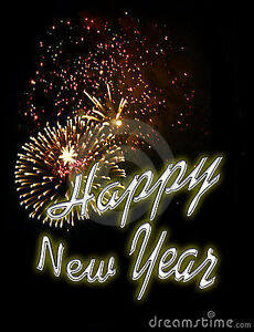 Book Your New Year Eve DJ NOW Stratford Kitchener Area image 1
