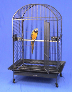 Looking for larg bird's cage