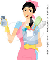 DREAM CLEAN, NEAT, AFFORDABLE, RELIABLE, PRECISE, CLEANING LADY