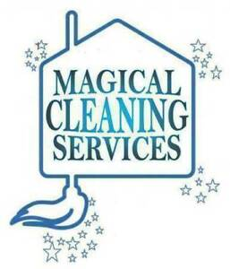 Great Affordable Cleaning!