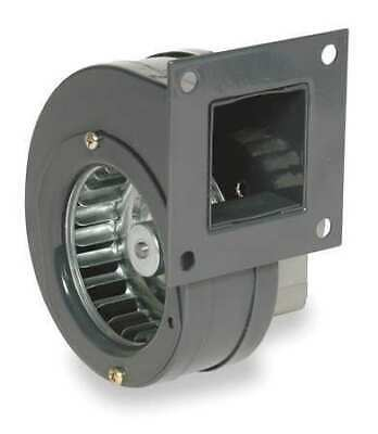 Dayton 1tdn4 Rectangular Oem Blower 3034 Rpm 1 Phase Direct Rolled Steel