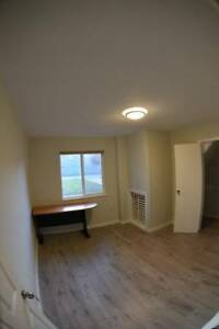 $700 Huge Private 1 bedroom near Burquitlam Skytrain/ port moody