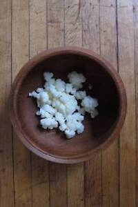 Healthy Dairy Kefir Grains